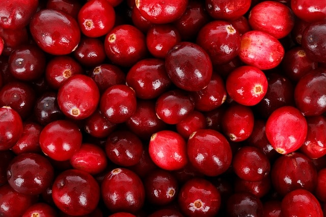 Cranberry bio du canada