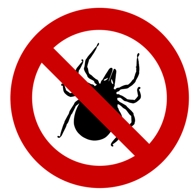 Morsure de tique et maladies transmises